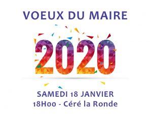 Cérémonie des vœux 2020 du Maire de Céré la Ronde (37)